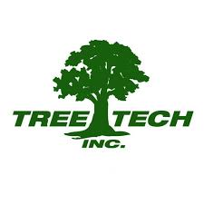 Your need Palm Tree Maintenance & Tree Removal in Tauranga, give us a call. We can help. Our expert arborists provide residential trimming, commercial tree maintenance and Tree Removal in Tauranga.  https://www.treetechnz.co.nz/